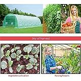 Mellcom 26' x 10' x 7' Greenhouse Large Gardening