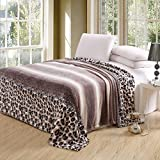 Luxurious Oversized Printed Super Soft Plush Flannel Blanket , Silky Throw in Full/Queen Size (79″x87″, F05-Leopard Stripe)