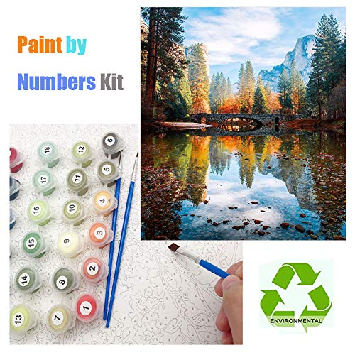 DIY Paint by Numbers, Canvas Oil Painting Kit for Kids & Adults, 16\