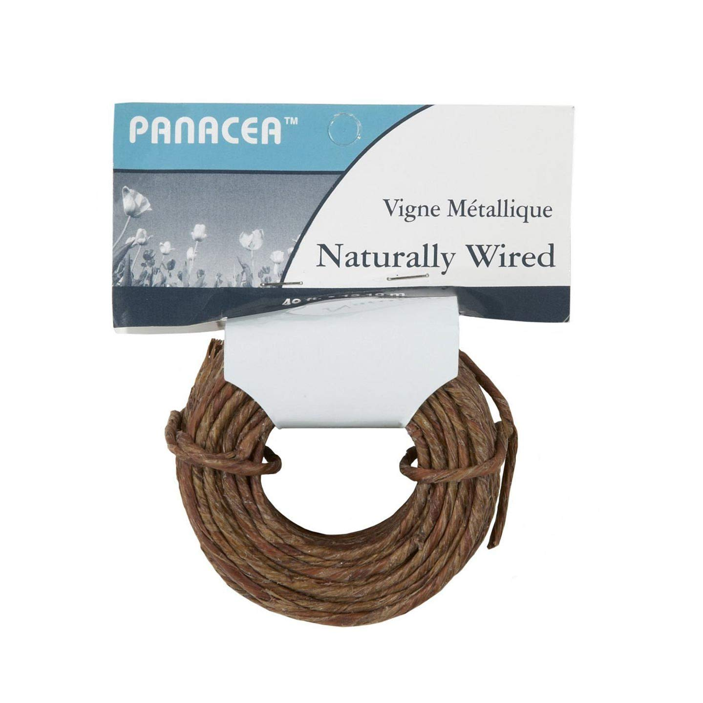 Darice Naturally Wrapped Vine Covered Craft Wire Rope with Rustic Feel for Wedding Crowns Woodland Crowns Head Wreaths Floral Arranging DIY Projects and Decorating 40 feet Brown by Panacea