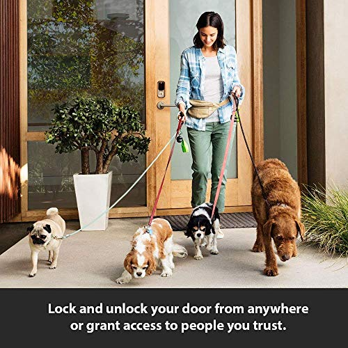 Yale Assure YRD256 SL Key Free Touchscreen Deadbolt + Amazon Cloud Cam | Key Smart Lock Kit (Satin Nickel) by Yale Security (Image #4)