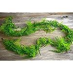 6-Ft-Artifical-Asparagus-Fern-Garland-Excellent-Home-Decor-Indoor-Outdoor