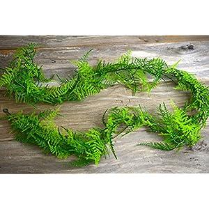 6 Ft Artifical Asparagus Fern Garland - Excellent Home Decor - Indoor & Outdoor 2