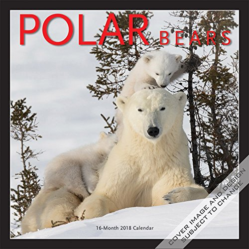 Polar Bears  2018 Monthly Wall Calendar