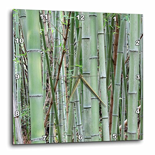 3D Rose dpp_206900_3 3dRose Japan, Nara Provence, Heguri-Cho. Close-up of Bamboo Grove. -Wall Clock (Cho Clock)