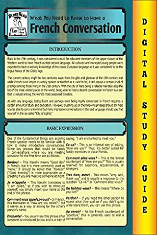 French Conversation ( Blokehead Easy Study Guide) (Quick Study Academics French)