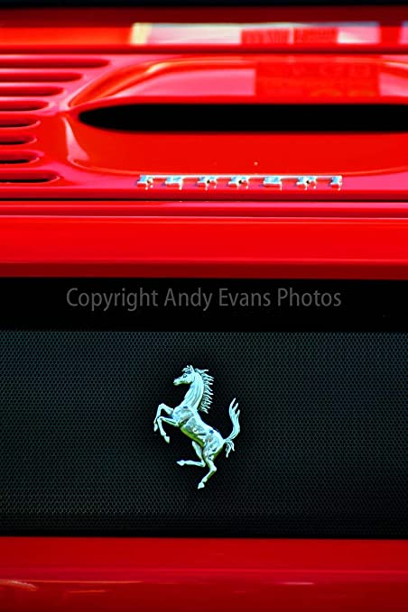 Ferrari Photograph A 12 X 18 Photographic Print Of A The Prancing