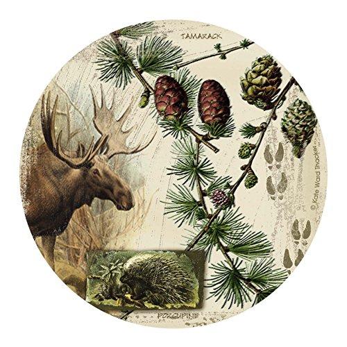 Thirstystone Drink Coaster Set, Bull Moose Collage -