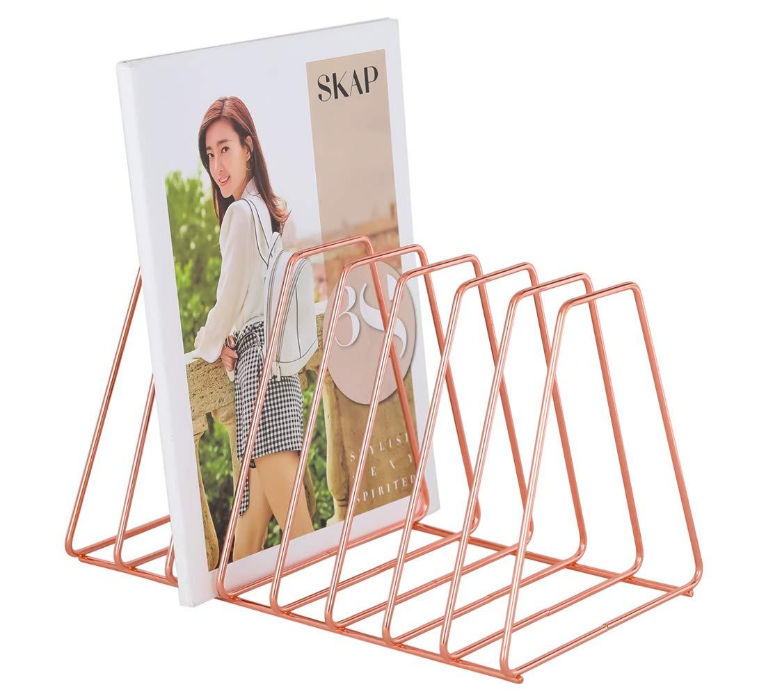 Superbpag File Organizer Copper Newspaper Magazine Holder Document File Stand Journals Magazine Rack for Home or Office, Rose Gold