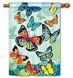 Cheap Butterfly Flight Spring House Flag Monarch Butterflies Morpho BreezeArt 28″x40″