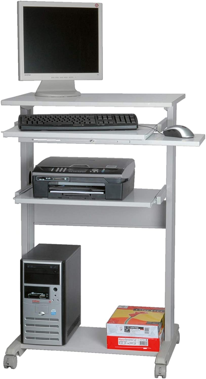 ROLINE PC Standing Workstation - Pieza de Mueble para ...