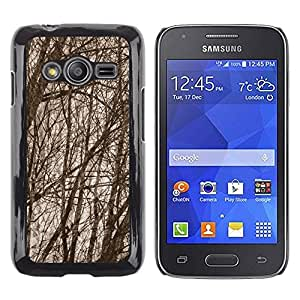 Caucho caso de Shell duro de la cubierta de accesorios de protección BY RAYDREAMMM - Samsung Galaxy Ace 4 G313 SM-G313F - Forest Tree Branches Autumn