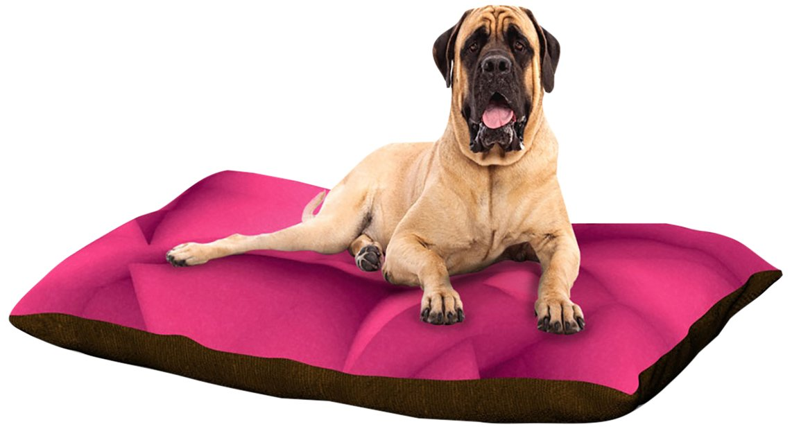 X-Large 40\ Kess InHouse Danny Ivan Tropical Cock  Dog Bed, 50 by 60-Inch