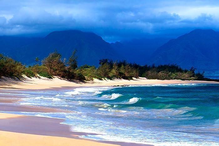 amazon com 12x18 hawaiian beach seascape maui hawaii tropical