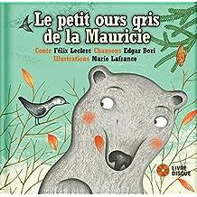 Petit ours gris de la Mauricie