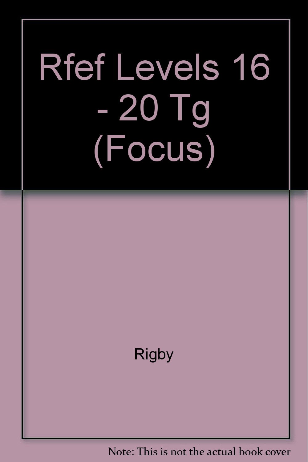 Rigby Focus Early Fluency: Teacher's Guide (Levels I-N) 2001: Rigby:  9780757827334: Amazon.com: Books