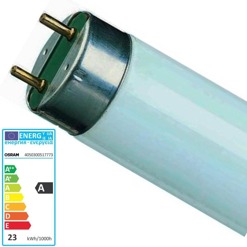 Osram. Tubo fluorescente T8 18w 865 G13. 598 X 26mm.