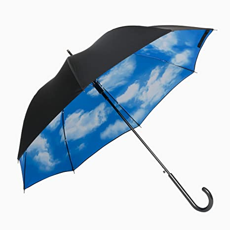 Amazon|傘と日傘専門店リーベン(Lieben) 長傘 外側ブラック、内側 ...