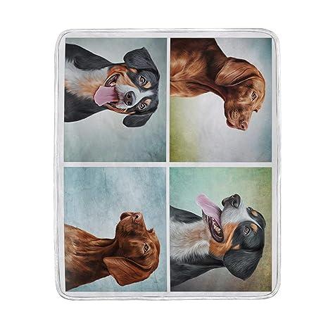 Manta Vintage Funny perros color de perro salchicha y Rottweiler grande manta mantas para sofá sofá