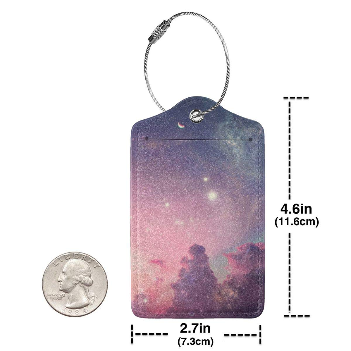 GoldK The Planet is Destroyed Leather Luggage Tags Baggage Bag Instrument Tag Travel Labels Accessories with Privacy Cover