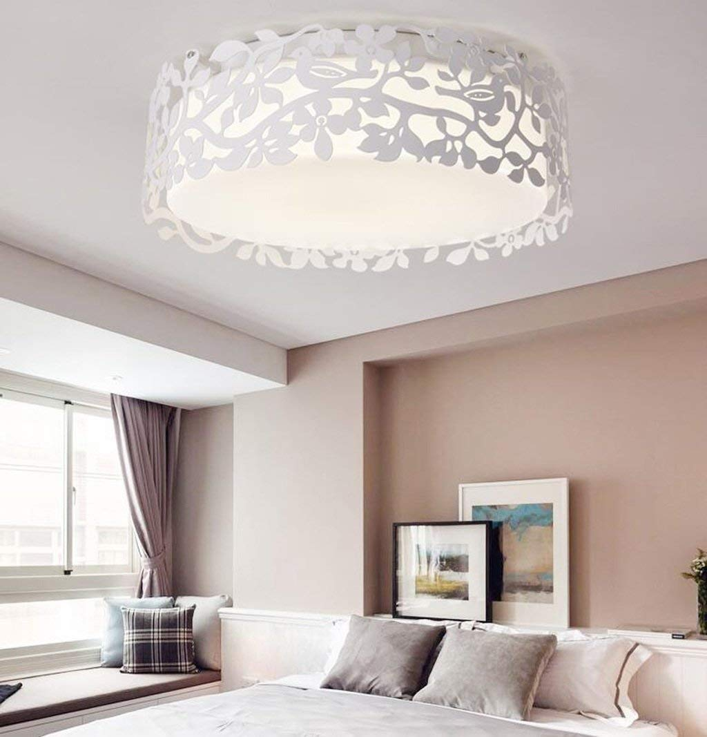 Amazon.com: PLLP Ceiling Lamp, Home Living Room Ceiling Lamp ...