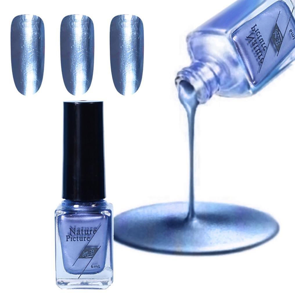 Lavany Nail Polish,6ML Plating Silver Paste Metal Color Stainless Steel Mirror Nail Polish (C)