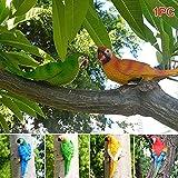GETMORE7 Kawaii Simulation Forest Parrot Figures Miniature Animal Model Bird Half Side Lifelike Sculpture(Blue 2#)