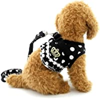 brother cat dog Puppy Cat Small Girl Dog Dots Vest Harness Leash Set Mesh Padded No Pull Lead Black L