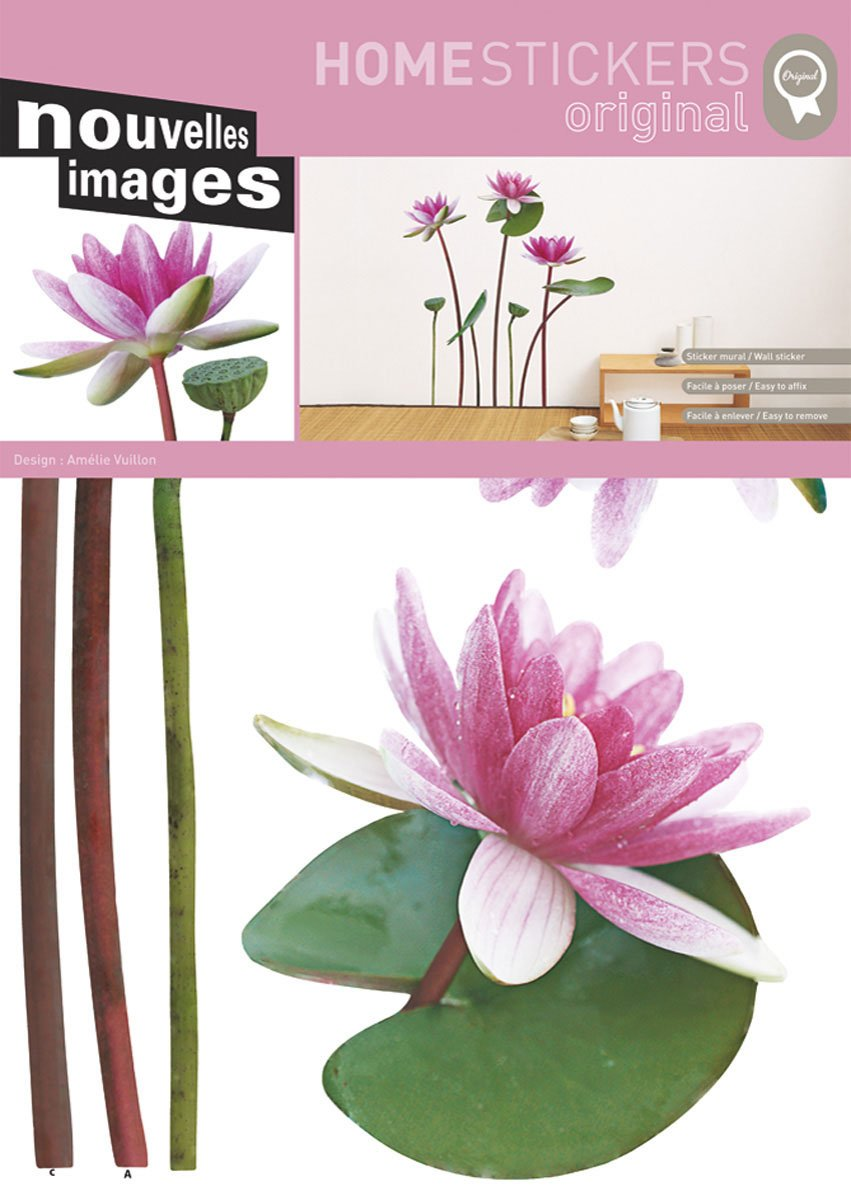 Amazon Nouvelles Images Host1518 Lotus And White Water Lily