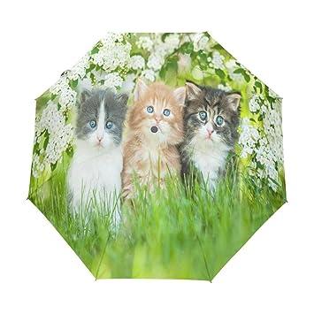 Enne paraguas gato plegable compacto viaje paraguas lluvia viento fácil llevar
