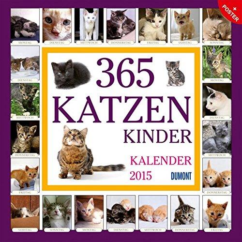 365 Katzenkinder - Kalender 2015