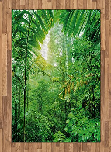 Lunarable Nature Area Rug, Fresh Green Rainforest in National Park of Costa Rica Tropical Wilderness Jungle Photo, Flat Woven Accent Rug for Living Room Bedroom Dining Room, 4' X 5.7', Green