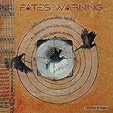 Theories of Flight (Vinyl)
