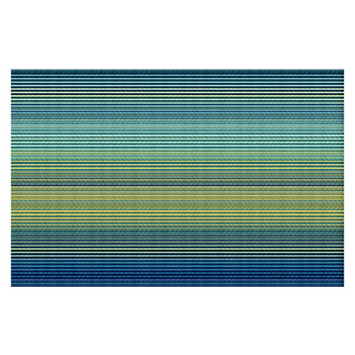 DiaNoche Woven Area Rugs, Kitchen Mats, Bath Mats by Christy Leigh Teling Stripes Large 4x6 Ft (Stripe Leigh)