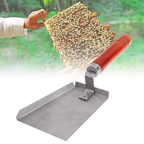 Pala de limpieza de apicultura de acero inoxidable con mango ...
