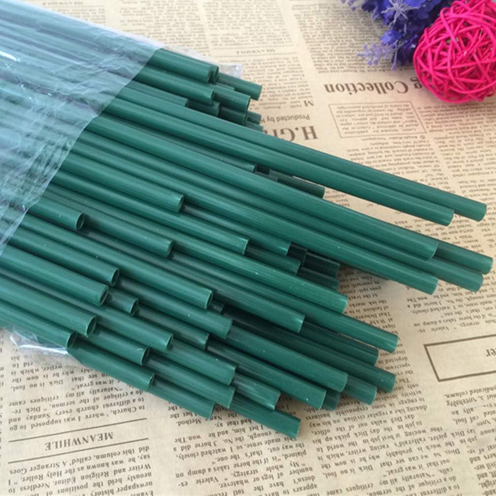 Healifty 20PCS Flower Water Tubes Clear Plastic Floral Tubes Vials for Milkweed Stem Cuttings Flower Arrangements