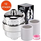 Neady 12-Stage Shower Water Filter with Replacement Cartridges Shower Head Water softener for Hard Water to Remove Chlorine and Flouride fluorine 2 Cartridges Shower Water Filter 363596