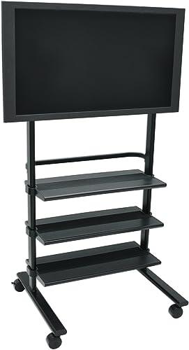 H. Wilson Versatile LCD Flat Mobile Panel Stand