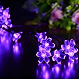 Dephen Solar String Lights, 50 LED 22ft Cherry Blossom Solar Fairy Christmas Decoration Lighting Waterproof Lights for Indoor/Outdoor, Patio,Diwali, Garden, Christmas Tree, and Holiday Festivals(Purple)