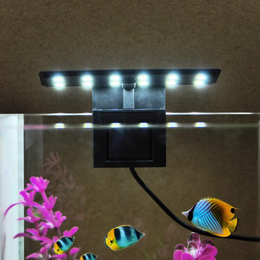 AC220V 5W 12 LED Aquarium Light Fish Jar L/ámpara Luz blanca Port/átil