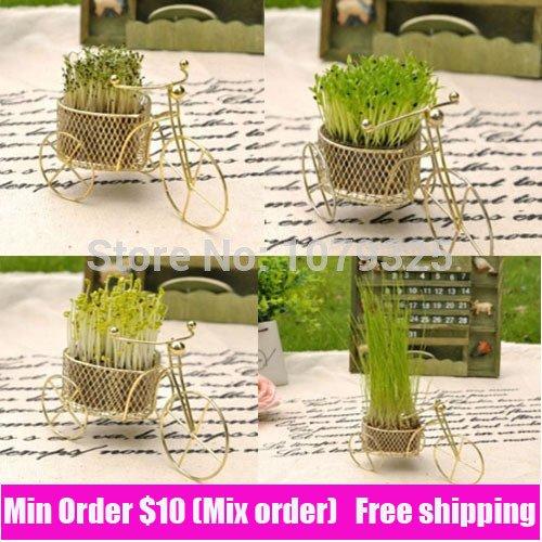 bike-pattern-mini-bonsai-cute-green-herbal-desktop-bosai-with-seeds-air-purification-grass-bonsai-re
