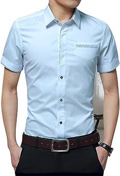 Gladiolus Camisa de Manga Corta para Hombres T-Shirt Oficina Tops con Botón M/L/XL/XXL/3XL: Amazon.es: Deportes y aire libre