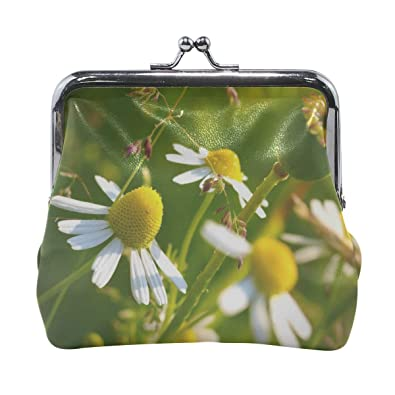 Amazon.com: Rh Studio Monedero Macro flores margaritas ...