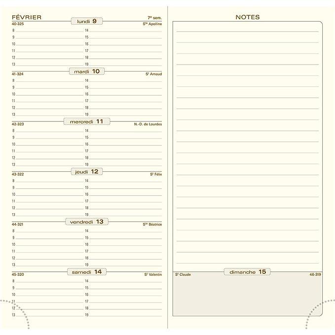 Amazon.com : Exacompta Espace 17 Weekly Pocket Diary ...