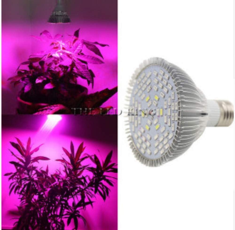xiadsk Luz del Crecimiento Vegetal de 120W E27 LED Que cultiva un huerto para el Sistema floreciente del hidrocultivo del Crecimiento del jardín