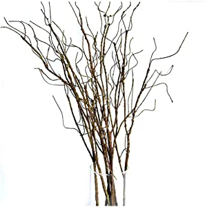 Pursuestar 6Pcs 75cm Lifelike Dry Willow Branches Bendable Iron Wires Artificial Floral Flower Stub Stem DIY Craft Wedding Home Room Vase Office Hotel Hall Decoration