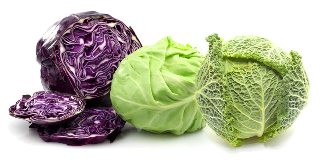 Raunak Seeds Mixed Cabbage Seeds Combo Red Cabbage Savoy Cabbage And Green Cabbage Avg 30 Seeds Each X 3 Packets Seeds Combo Amazon In Garden Outdoors
