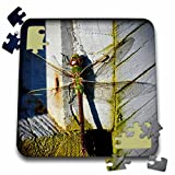 WhiteOaks Photography and Artwork - Insects - Dragonfly2 is a photo of a dragonfly against wood with green moss - 10x10 Inch Puzzle (pzl_252491_2)