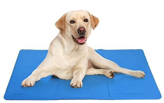 DZL Alfombrilla de Refrigeración Animales Nevera y Manta refrescante para Perro Fresco Cojín Manta Enfriador para Mascotas Camas de Suelo (81 * 96CM)