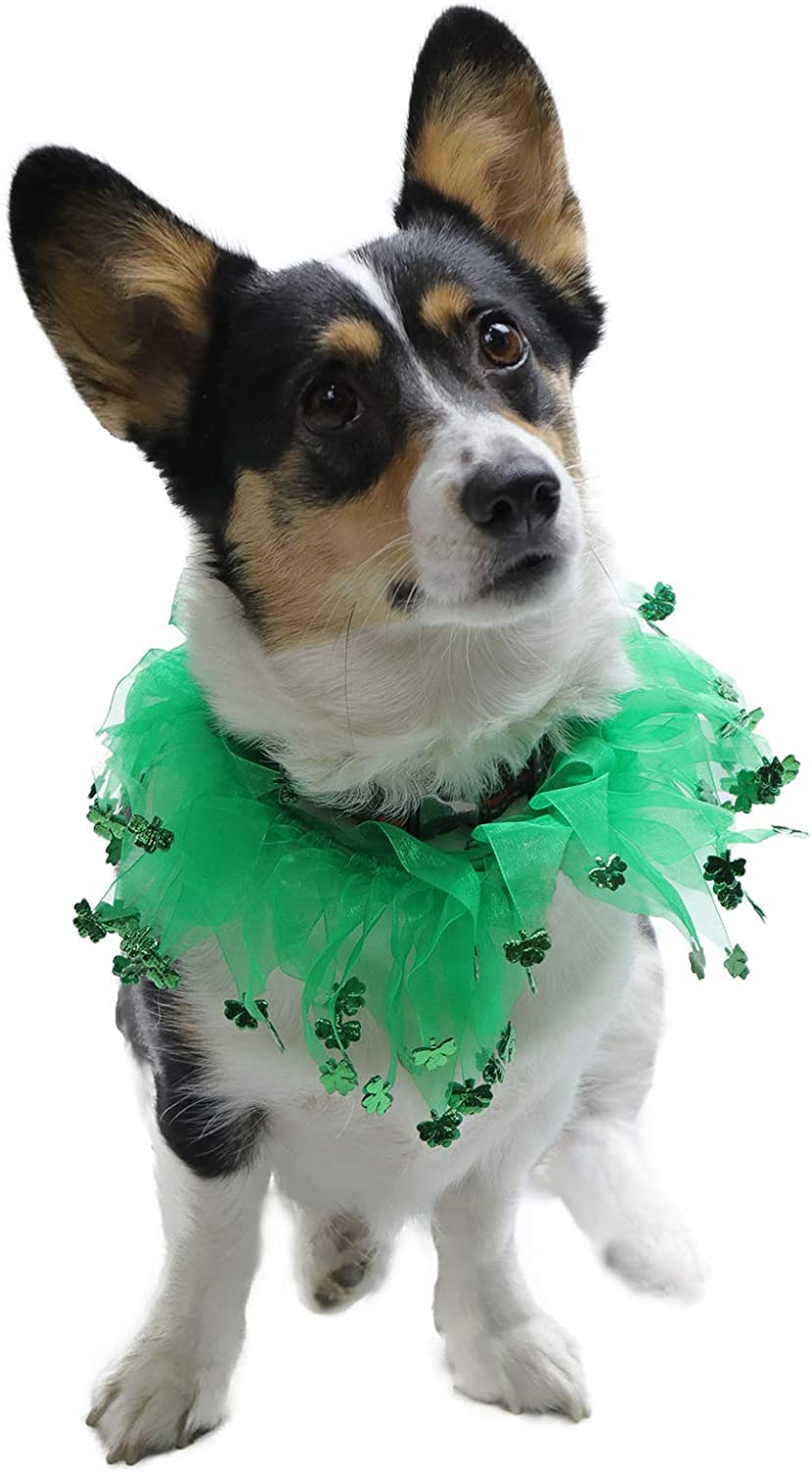 Medium Coomour Funny St Patricks Day Dog Collar Costume Pet Accessories Decoration for Cats Puppy Dogs Pets